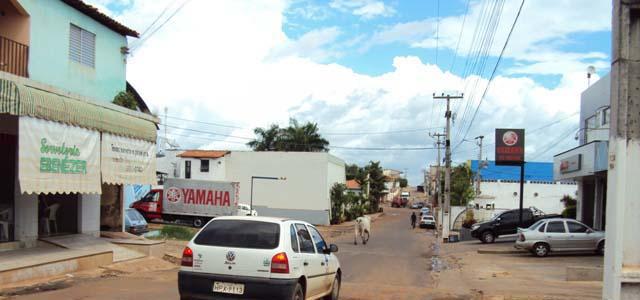 vaca-na-rua2